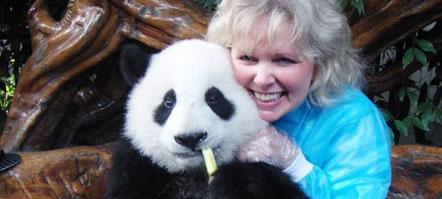 Chengdu panda trips