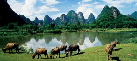 Hong Kong to Guilin Tours