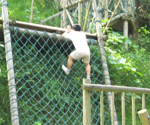 Jack Climbing Rope Wall