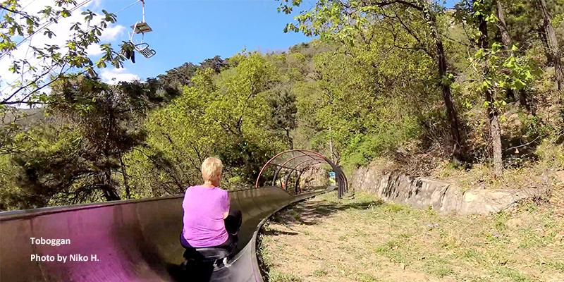 Take a toboggan down the mountain