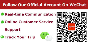 Follow Our Official Account On WeChat