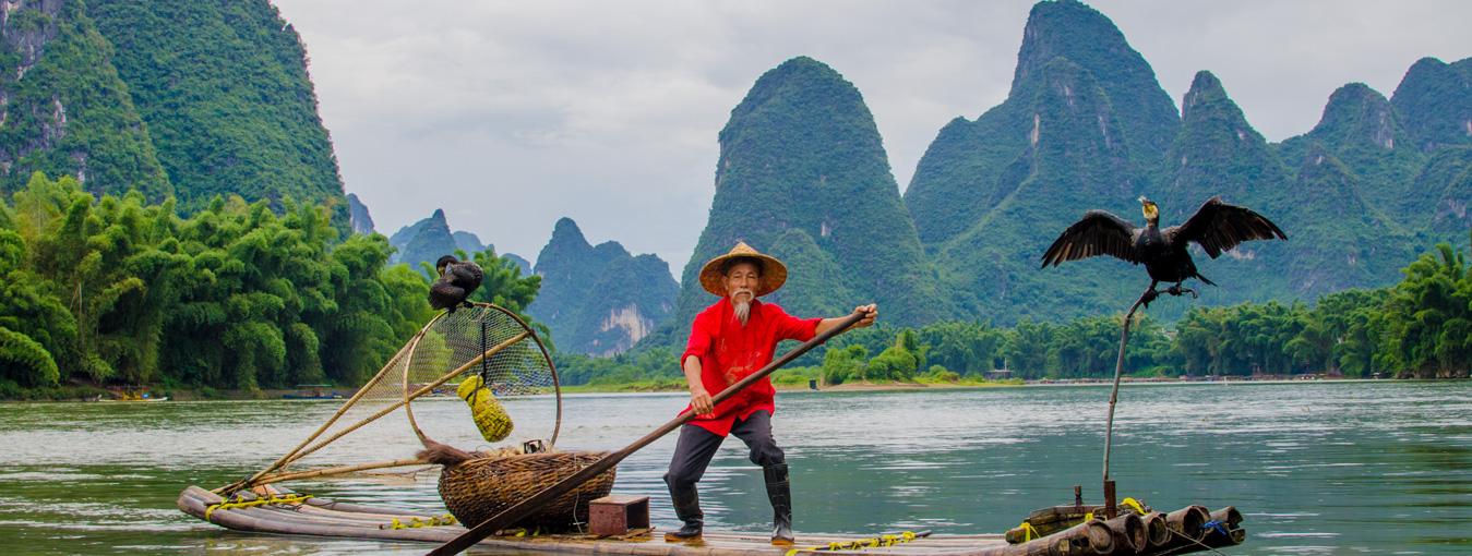 Li River Cormorant Fisherman