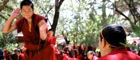 Monks Debate at Sera Monastery