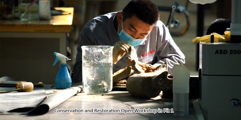 Conservation and Restoration Open Workshop