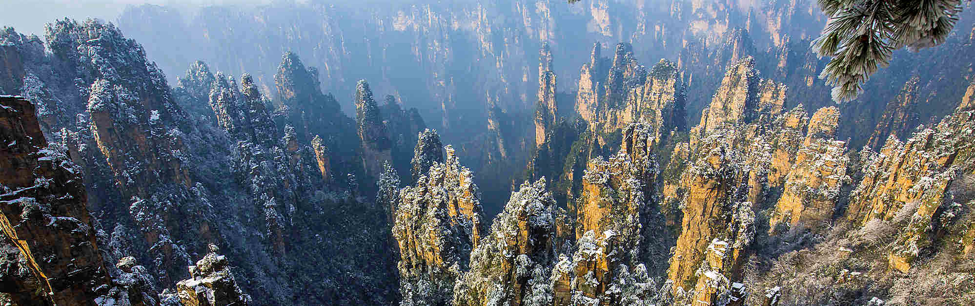 One-Day Zhangjiajie National Forest Park Tour