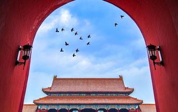 Half-day In-depth Beijing Forbidden City Heritage Discovery