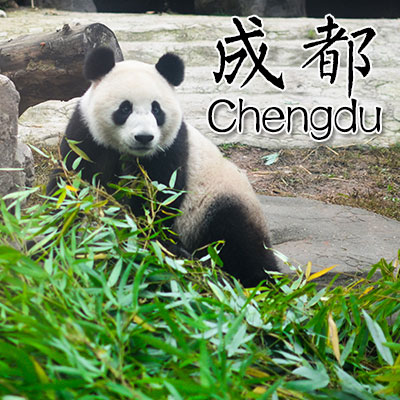 Chengdu Day Tours