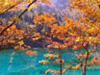 yellow mountains in Autumn