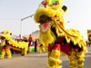 lion dance celebration
