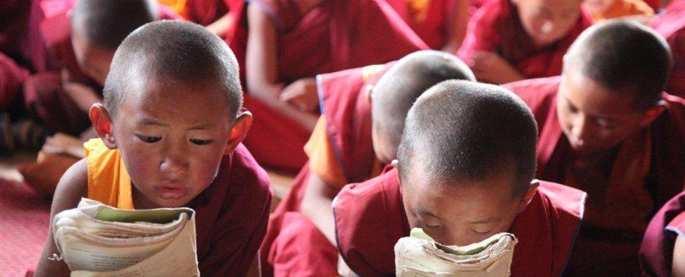 Tibet Little Monks Are Reading