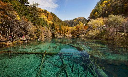 The Fall Colors of the Lake in Jiuzhaigou