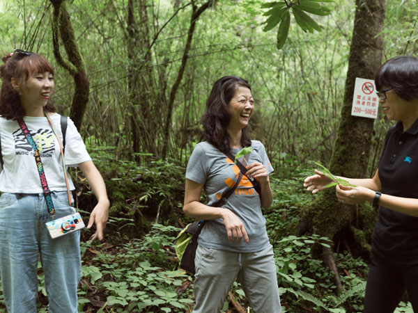 Walking guide is explaining wild plants on the habitat