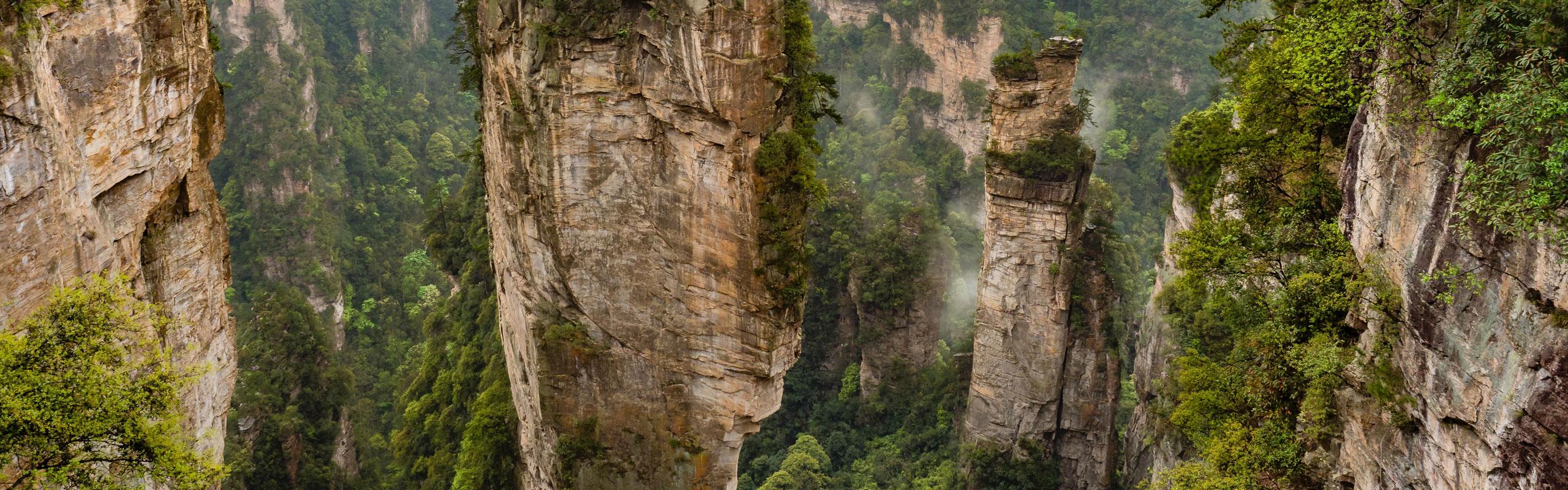 15-Day Nature of China