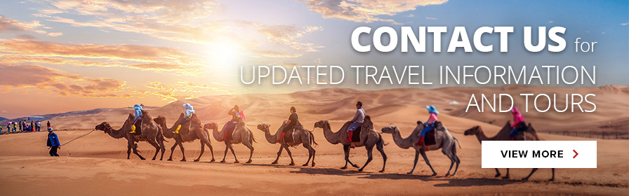 Contact us updated travel information