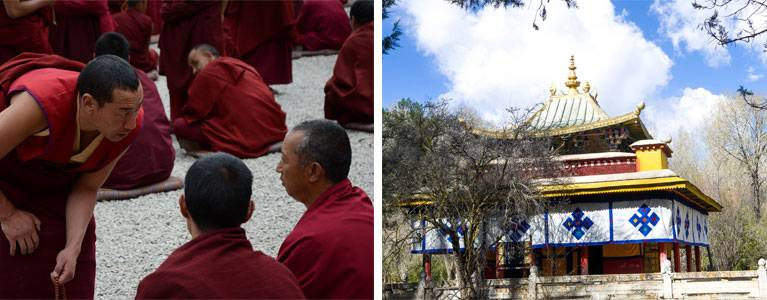 Debating at Drepung Monastery and Norbulingka