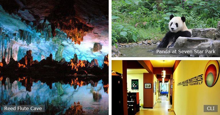 giant panda and reed flute cave