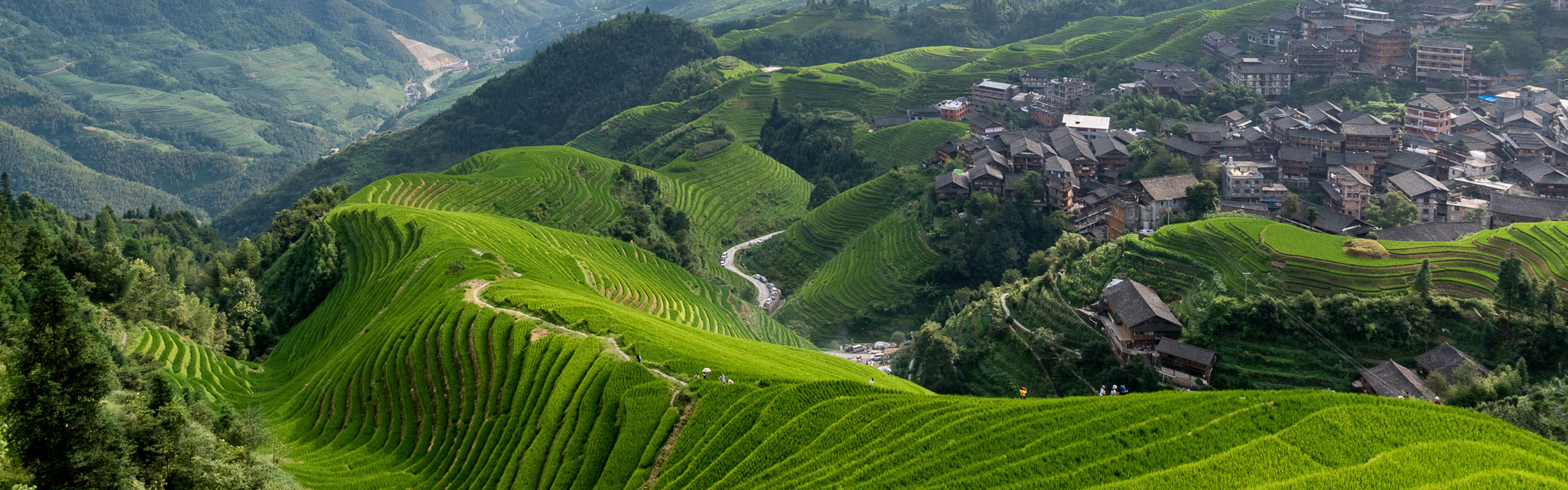 Longji Terraced Fields Hiking Extension