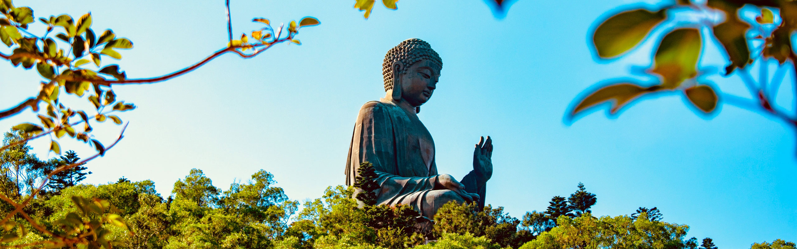 Lantau Island and Giant Buddha Tour