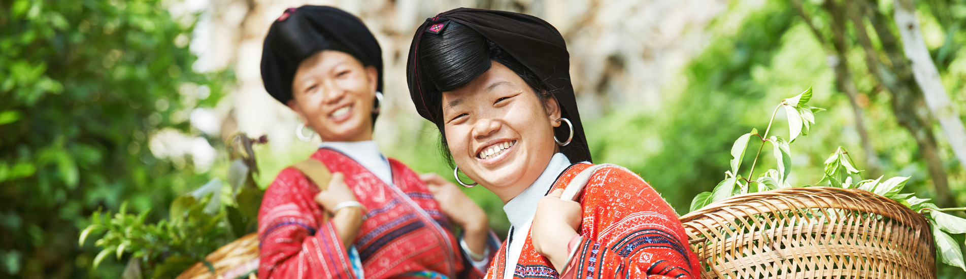 the minority people in Longji Terraced Fields