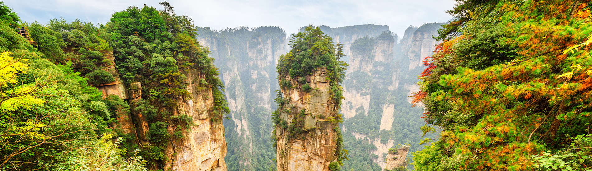 the landscape of Zhangjiajie National Forest Park