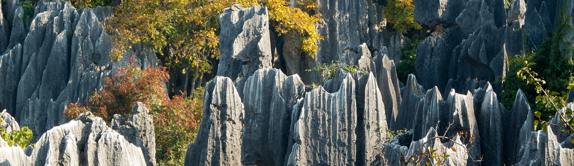 the Stone Forest in Kunming, the capital of Yunnan Province