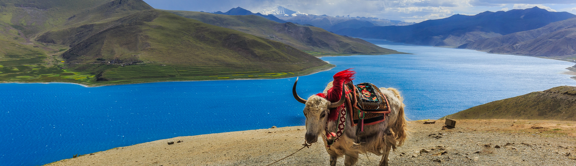 Lake Yamdrok in Tibet