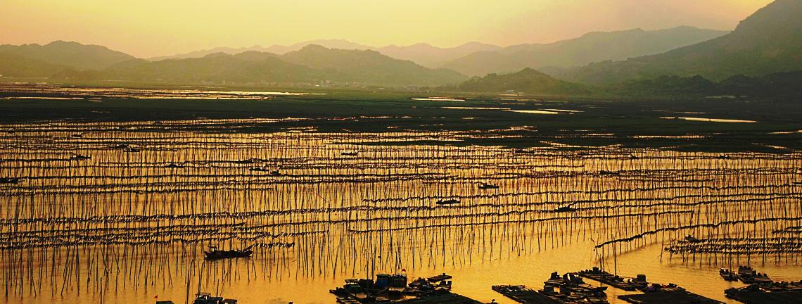 Xiapu Scenery