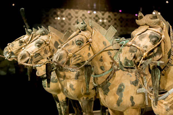 Horses of the terracotta army