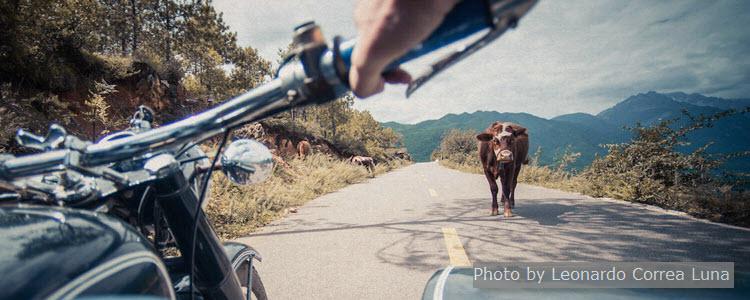 Lijiang Sidercar Tour