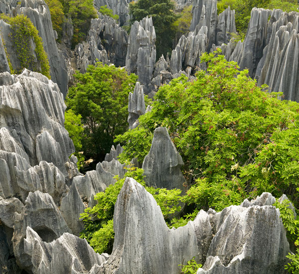 3-Day Stone Forest and City Essence Tour