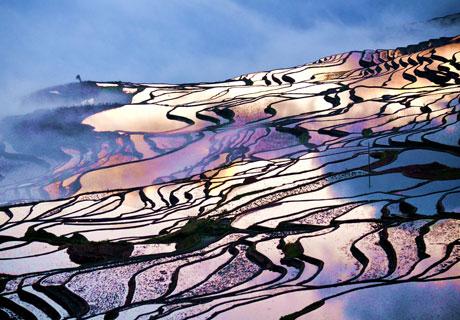 Yuanyang Terrced Fields
