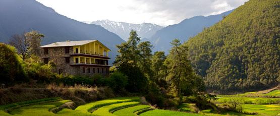 the terraced fields in Tacheng