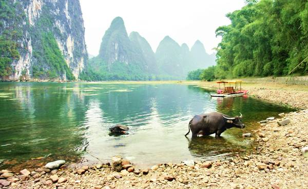 Enjoy a Li River Cruise