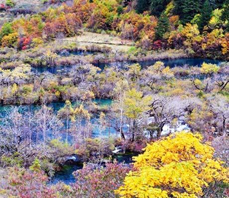 The autumn colors in Jiuzhaigou valley