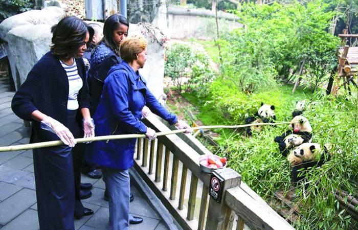 Michelle Obama See Giant Pandas