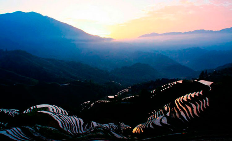 Sunrise in Longji Terraced Fields