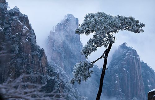 Yellow Mountains Snow Scenery