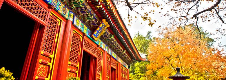 Best Places to See Fall Foliage in Beijing