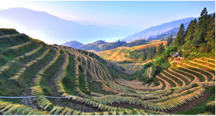 most beautiful rice terraces