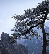 TOP sites naturels
