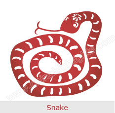 Snake - Chinese Zodiac Signs
