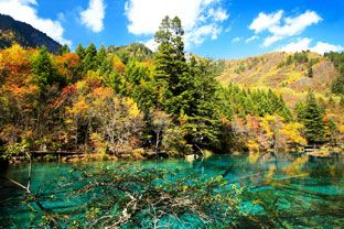 top places to see fall foliage in China