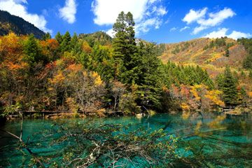 China's Top National Parks