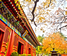 autumn colors in Beijing
