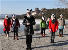 China Highlights Gangnam Style New Year Greetings